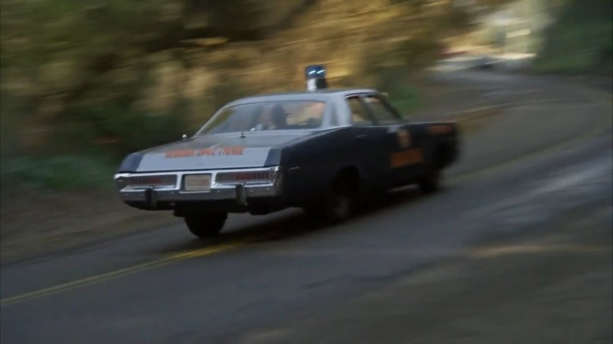 1973 Dodge Polara 8 - Best Movie Cars