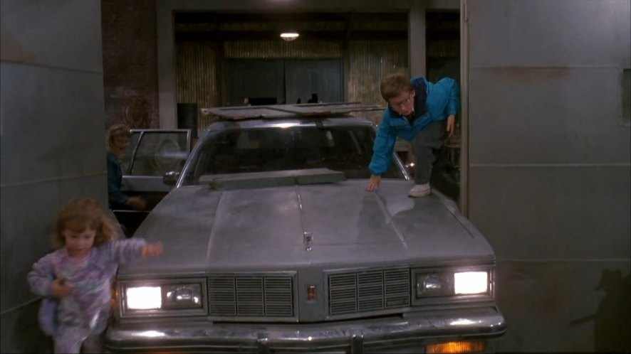 1983 Oldsmobile Custom Cruiser